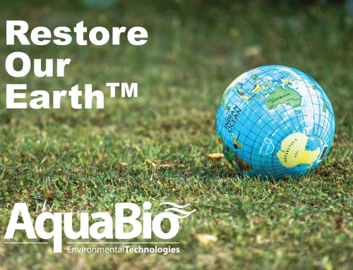 Restore Our Earth™ – International Earth Day